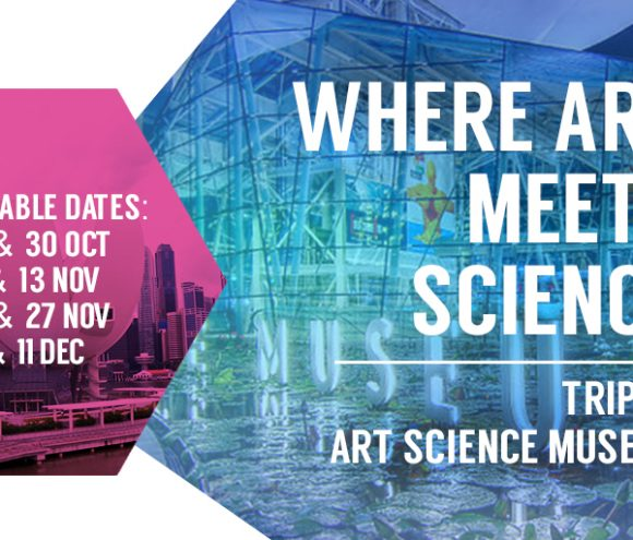 Where Art Meets Science: Trip to Art Science Museum